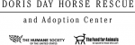 Doris-Day-Horse-Rescue