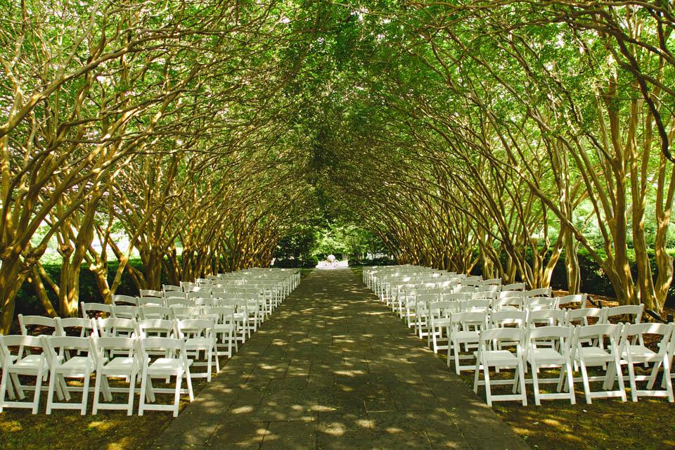 Katy Matt S Wedding