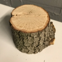 Mini Tree Stump Table Number Holders