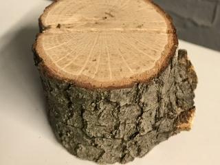 Mini Tree Stump Table Number Holders